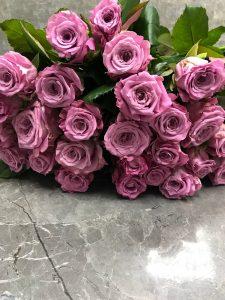 Розы меритим