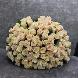 101 роза талия