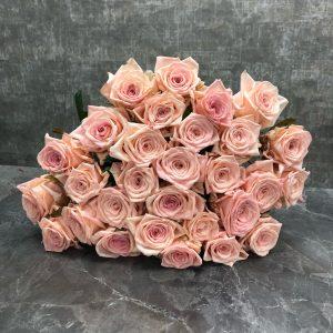 Розы кимберли