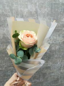 1 роза в пленке