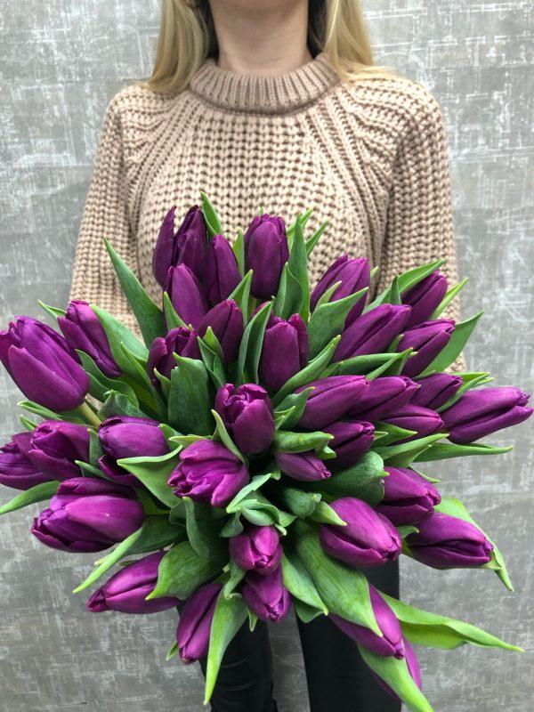 сочные тюльпаны